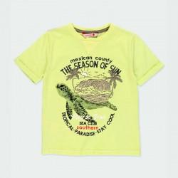 camiseta niño amarilla y estampado tortuga